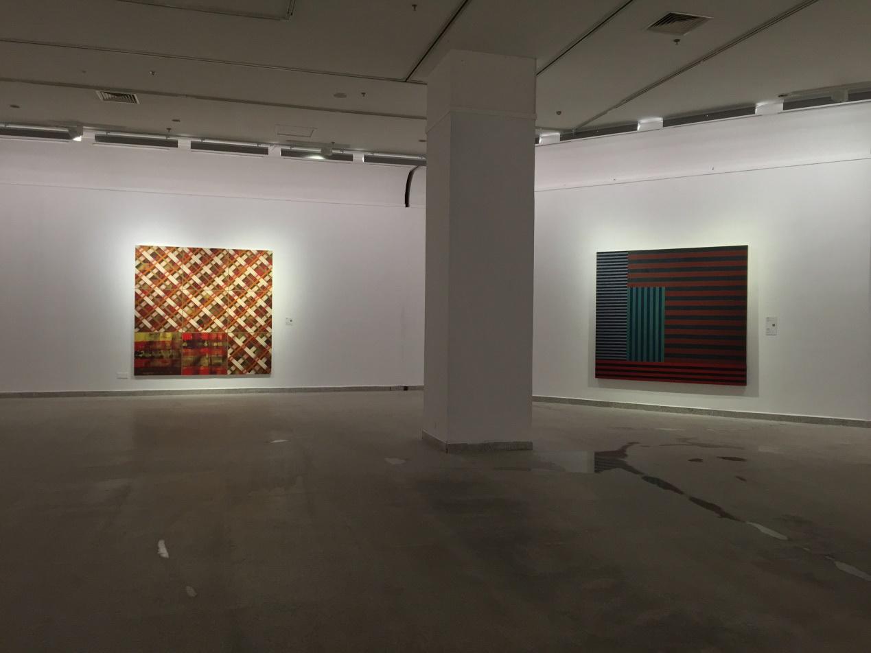 湖北美術館照明_肖恩·斯庫利抽象畫巡展