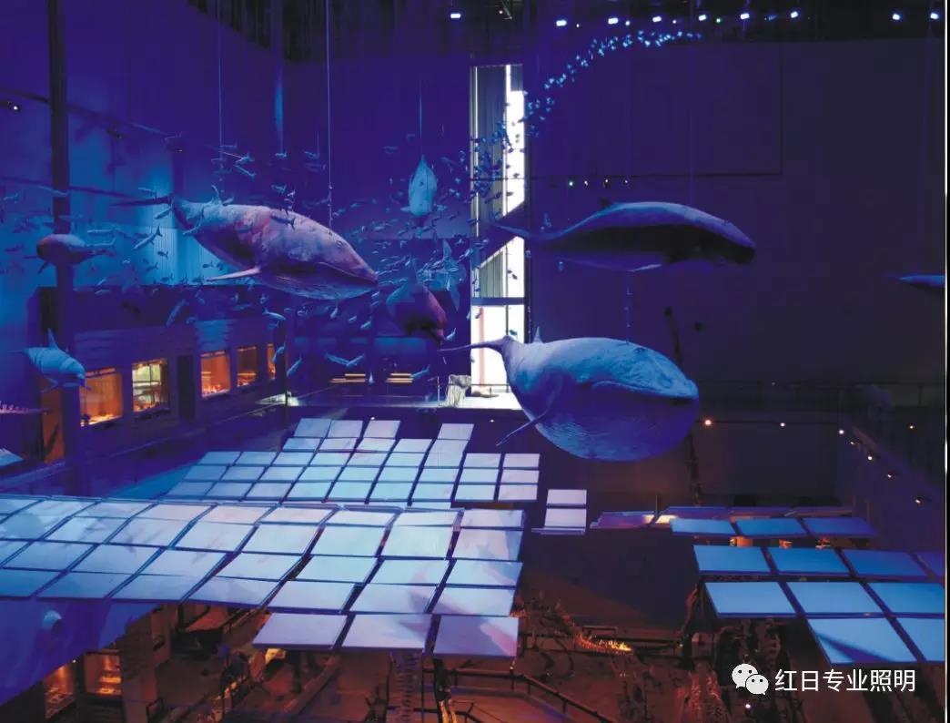 广东省博物馆(新馆)