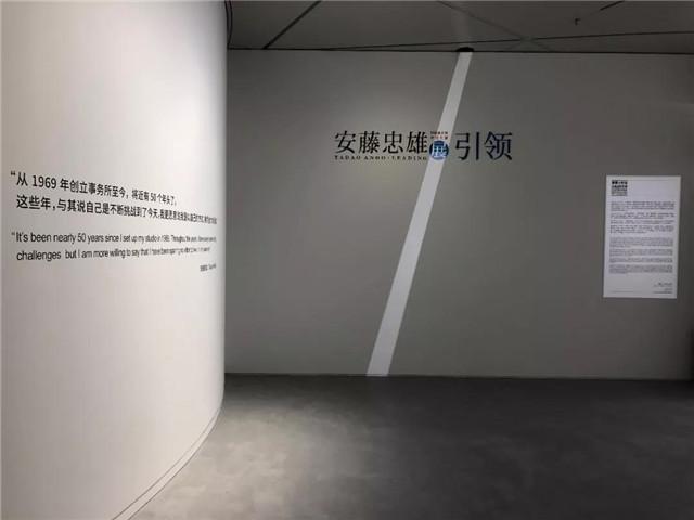 明珠美术馆 安藤忠雄个展:引领
