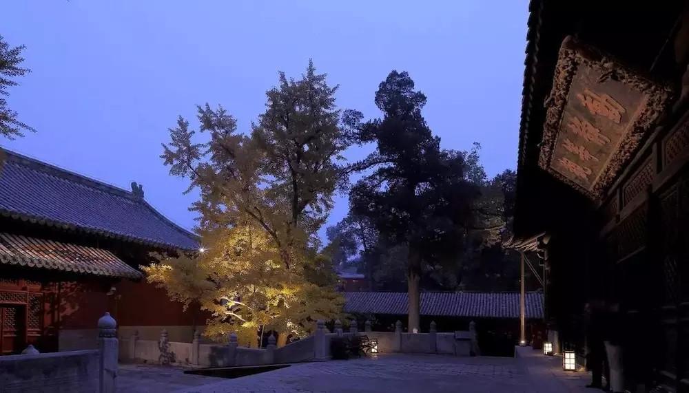 西山大觉寺照明设计案例中辰作品欣赏